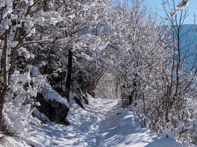 rando hiver neige gitamiglos