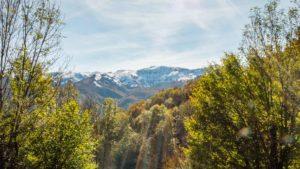 automne ariège sommet neige forêt